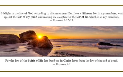 CBC 7 The Knowledge of Life – 4th session: Discerning Soul & Spirit; 3 Lives & 4 Laws